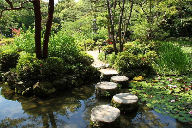 stepping stones to transfomation